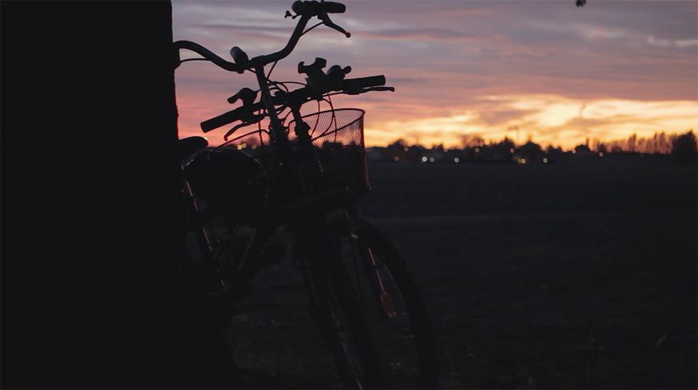 bici-low