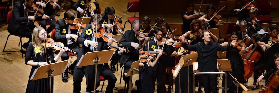 I violini torna