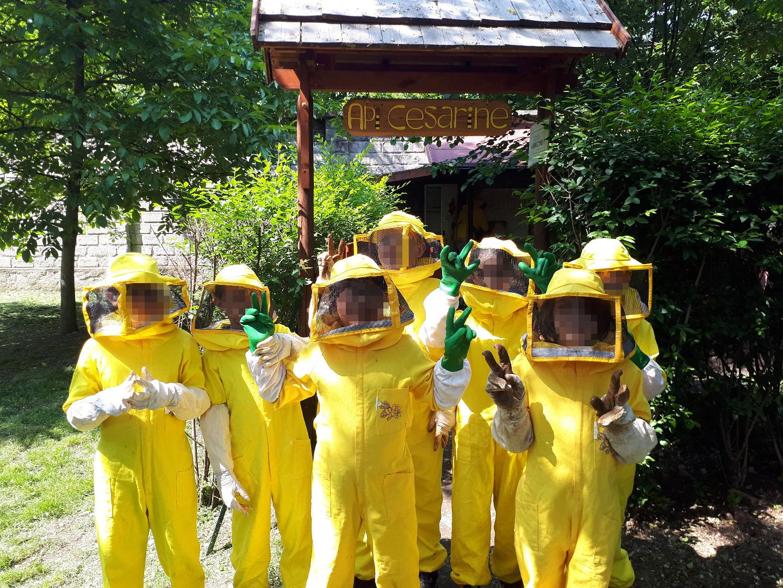 ingresso-apiari